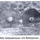 Crawinkler barboff 2005 p 158