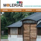 moleriae.png