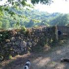 Mur vicino casa roncella dscf6025 copie