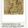 terracotta-osti-soprintendenza.png