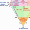 diagramm-qapf-magmatiche.png