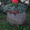 meule-fleurs.png