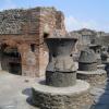 pompei-modestus.png
